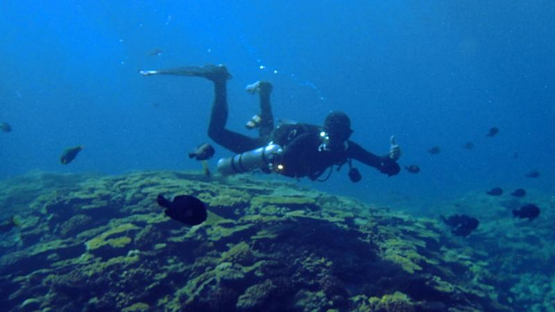 Peak Performance Buoyancy Diver Specialty Course